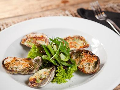 Vibriosis 101: Oyster Food Safety